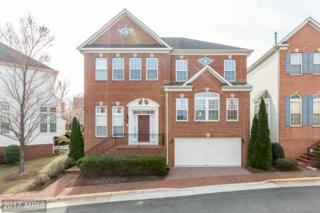 6935 Inlet Cove Drive, Fort Belvoir, VA 22060 (#FX9887171) :: Pearson Smith Realty