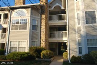 5605 Willoughby Newton Drive #22, Centreville, VA 20120 (#FX9887750) :: LoCoMusings