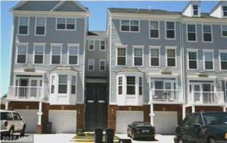 2432 Curie Court #32, Herndon, VA 20171 (#FX9887848) :: Pearson Smith Realty