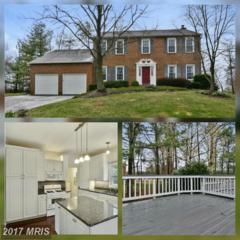 15107 Wetherburn Drive, Centreville, VA 20120 (#FX9888903) :: Pearson Smith Realty