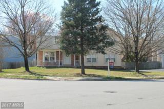 4310 Cub Run Road, Chantilly, VA 20151 (#FX9889461) :: Robyn Burdett Real Estate Group