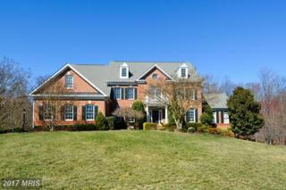 5802 Ridings Manor Place, Centreville, VA 20120 (#FX9889576) :: LoCoMusings