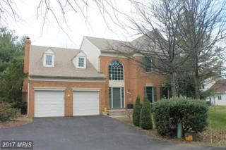 3812 Wheatgrain Lane, Fairfax, VA 22033 (#FX9889598) :: Pearson Smith Realty