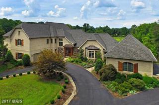 13104 Laurel Glen Road, Clifton, VA 20124 (#FX9891170) :: Pearson Smith Realty