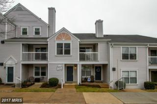 5878 Orchard Hill Court #5878, Clifton, VA 20124 (#FX9891977) :: LoCoMusings