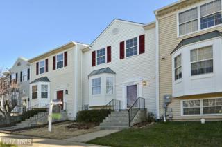 13942 Antonia Ford Court, Centreville, VA 20121 (#FX9893528) :: LoCoMusings