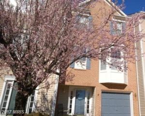14194 Asher View, Centreville, VA 20121 (#FX9894170) :: Pearson Smith Realty
