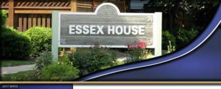 6114-A Essex House Square 6114A, Alexandria, VA 22310 (#FX9895177) :: LoCoMusings