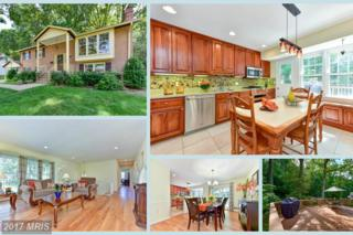 8509 Frost Way, Annandale, VA 22003 (#FX9895511) :: LoCoMusings