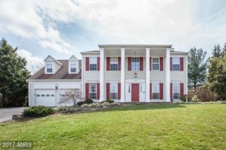 1583 Kingstream Circle, Herndon, VA 20170 (#FX9895950) :: Robyn Burdett Real Estate Group