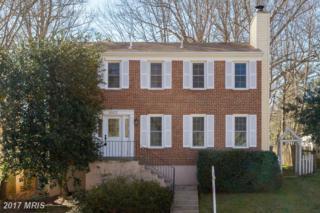 8503 Cherry Heights Court, Springfield, VA 22153 (#FX9896712) :: Pearson Smith Realty
