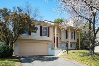 12518 Misty Water Drive, Herndon, VA 20170 (#FX9899336) :: Robyn Burdett Real Estate Group