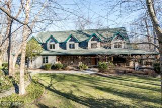 990 Millwood Lane, Great Falls, VA 22066 (#FX9899592) :: Pearson Smith Realty
