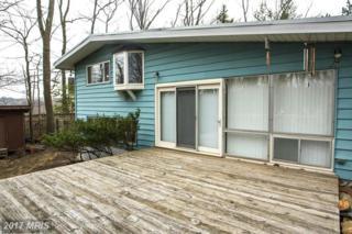 3812 Javins Drive, Alexandria, VA 22310 (#FX9900120) :: Robyn Burdett Real Estate Group