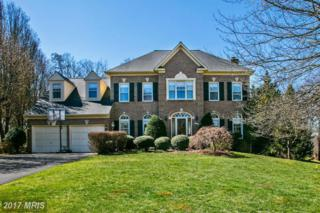 14253 Stone Chase Way, Centreville, VA 20121 (#FX9900684) :: Robyn Burdett Real Estate Group