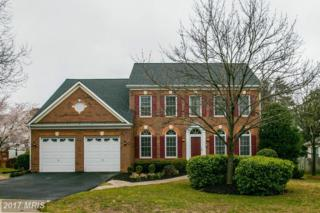13086 Autumn Willow Drive, Fairfax, VA 22030 (#FX9900748) :: LoCoMusings