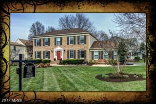 13126 Pelmira Ridge Court, Oak Hill, VA 20171 (#FX9900929) :: Robyn Burdett Real Estate Group