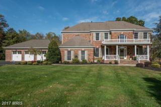 16700 Cedar Post Court, Centreville, VA 20120 (#FX9901166) :: Robyn Burdett Real Estate Group