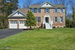 15562 Smithfield Place, Centreville, VA 20120 (#FX9901473) :: Robyn Burdett Real Estate Group