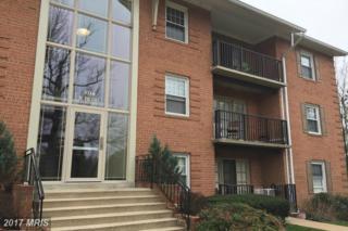 3334 Spring Lane B-36, Falls Church, VA 22041 (#FX9901682) :: Robyn Burdett Real Estate Group