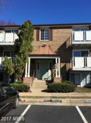 8386 Brockham Drive F, Alexandria, VA 22309 (#FX9903322) :: Pearson Smith Realty