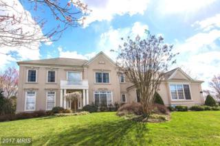 1423 Mayhurst Boulevard, Mclean, VA 22102 (#FX9905012) :: Pearson Smith Realty