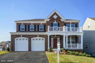 9206 Birch Crest Way, Lorton, VA 22079 (#FX9905150) :: Pearson Smith Realty