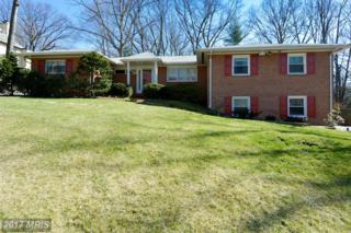 1531 Woodacre Drive, Mclean, VA 22101 (#FX9905769) :: Pearson Smith Realty