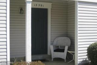 13591 Orchard Drive #3591, Clifton, VA 20124 (#FX9906730) :: Pearson Smith Realty