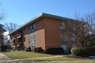 3716 Rosser Street #202, Alexandria, VA 22311 (#FX9908085) :: Pearson Smith Realty