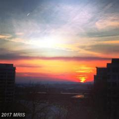 11800 Sunset Hills Road #1112, Reston, VA 20190 (#FX9909228) :: Pearson Smith Realty