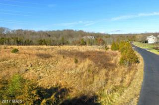 5425 Chandley Farm Circle, Centreville, VA 20120 (#FX9910422) :: Pearson Smith Realty