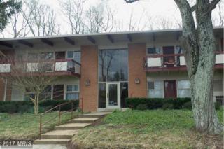 4241 Americana Drive #202, Annandale, VA 22003 (#FX9910805) :: Pearson Smith Realty