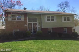 4307 Javins Drive, Alexandria, VA 22310 (#FX9911642) :: Pearson Smith Realty