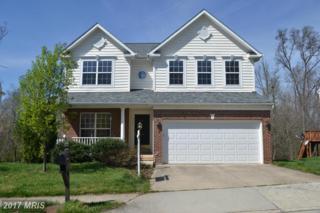 3734 Freehill Lane, Fairfax, VA 22033 (#FX9912507) :: Pearson Smith Realty