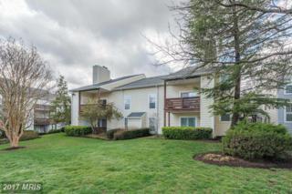 10033 Oakton Terrace Road #10033, Oakton, VA 22124 (#FX9913293) :: LoCoMusings