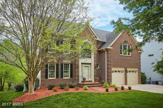 3835 Barcroft Lane, Alexandria, VA 22312 (#FX9913533) :: Pearson Smith Realty