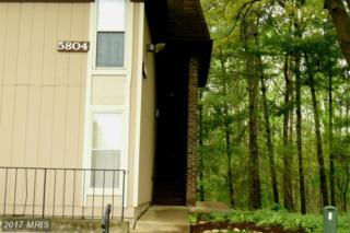 5804 Royal Ridge Drive G, Springfield, VA 22152 (#FX9914594) :: Pearson Smith Realty
