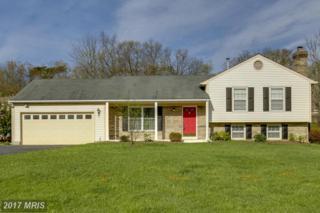 6506 White Post Road, Centreville, VA 20121 (#FX9914833) :: Pearson Smith Realty