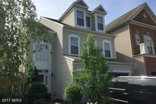 4713 Manor Drive, Alexandria, VA 22309 (#FX9915392) :: Pearson Smith Realty