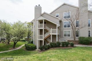 6612 Jupiter Hills Circle E, Alexandria, VA 22312 (#FX9915509) :: Pearson Smith Realty