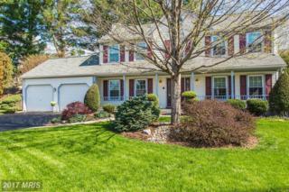 5836 Stone Ridge Drive, Centreville, VA 20120 (#FX9915789) :: Pearson Smith Realty