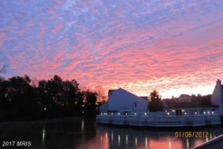 3316 Lakeside View Drive 3-7, Falls Church, VA 22041 (#FX9916615) :: LoCoMusings