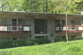 7746 Donnybrook Court #206, Annandale, VA 22003 (#FX9917997) :: Pearson Smith Realty