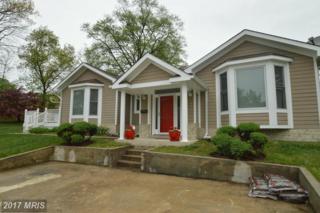 3146 Graham Road, Falls Church, VA 22042 (#FX9918894) :: Pearson Smith Realty