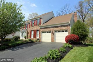 13674 South Springs Drive, Clifton, VA 20124 (#FX9919256) :: A-K Real Estate
