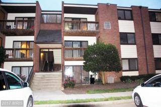 10725 West Drive #204, Fairfax, VA 22030 (#FX9920056) :: Pearson Smith Realty