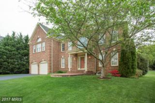 5420 Grist Mill Woods Way, Alexandria, VA 22309 (#FX9922032) :: A-K Real Estate