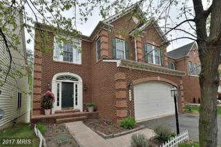 9503 Daniel French Street, Lorton, VA 22079 (#FX9922382) :: Pearson Smith Realty