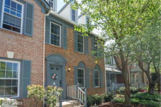 12530 Sweet Leaf Terrace, Fairfax, VA 22033 (#FX9922790) :: Pearson Smith Realty